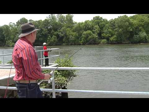 Grays Ferry
