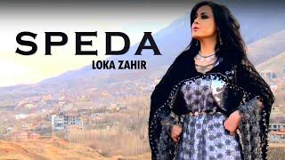 Loka Zahir Speda by Halkawt Zaher