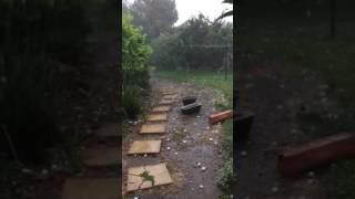 adelaide freak golf ball hail storm november 11 2016