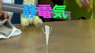 【実験】身近な道具で静電気 / 米村でんじろう[公式]/science experiments