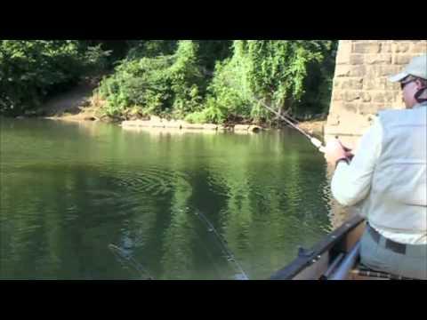 Broad River Smallmouth Promo