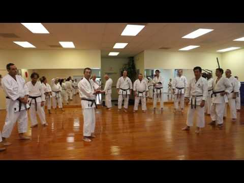 Heian Godan application explained by Master Osaka 8th Dan JKA
