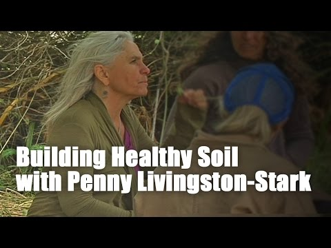 Building Healthy Soil with Penny Livingston-Stark