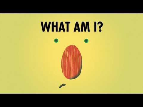 Avocado Asks by Momoko Abe