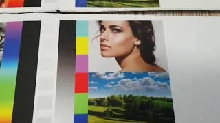 Цветовой профиль принтера Epson PX 1004для ткани.