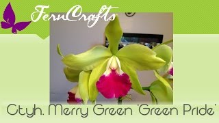 FernCrafts: Orchid Update-Green Pride in bloom Aug, 2015