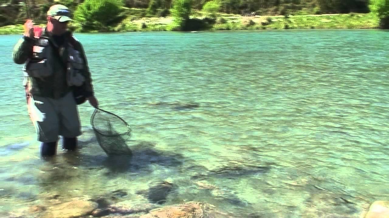Fly Fishing NZ Big River Big Fish From NelsonMarlborough YouTube - Big river