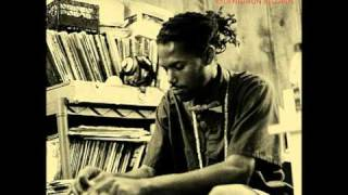 Damu The Fudgemunk - Pulse [Fudgemunk Instro 2006]