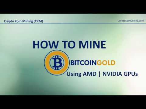 How to mine bitcoin gold mining bitcoin gold using amd and nvidia how to mine bitcoin gold mining bitcoin gold using amd and nvidia cards ccuart Choice Image