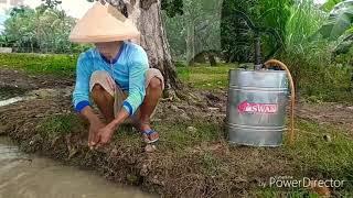 BOCORAN DANGDUT TARLING TERBARU 2019 - Wong Tani - Susy Arzety (Cover video Parodi)