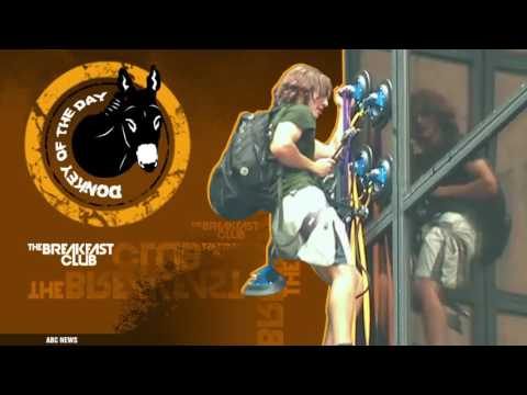 Donkey of the Day - Trump Tower Climber (8-11-16)