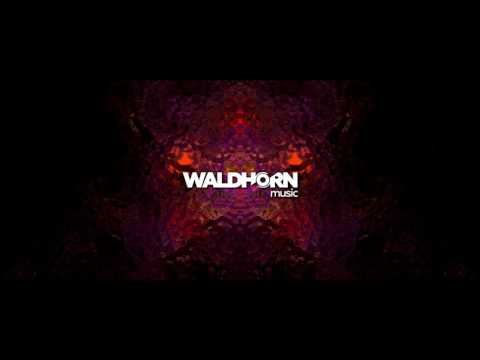 Antony Waldhorn - Ghost In The Machine (Intro Edit)