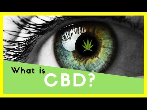 What is CBD?| Benefits of CBD| CBD hemp oil