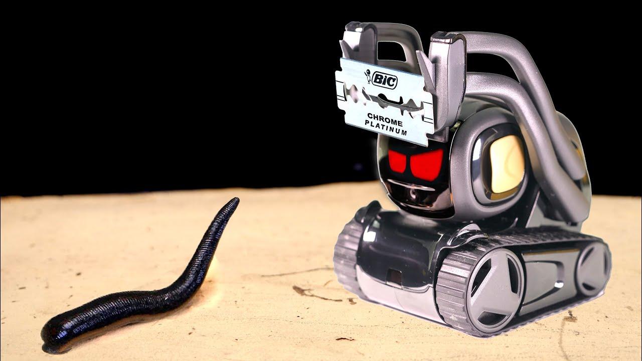 THE ROBOT KILLER ANKI VECTOR VS LEECH! ARTIFICIAL INTELLIGENCE AGAINS LEECH