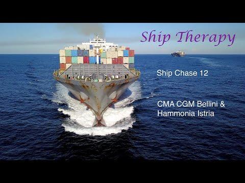 Ship Chase 12 - CMA CGM Bellini & Hammonia Istria - Opposing movements - Mavic Pro 4K