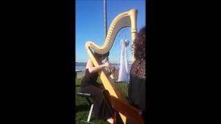 Republic of Music   Harp Live Video