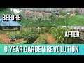 Junk Pile to GARDEN OASIS in 6 Years, Natural Farming Permaculture Gardening