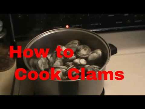 How to Cook Steamed Clams by pizzatherapy.com