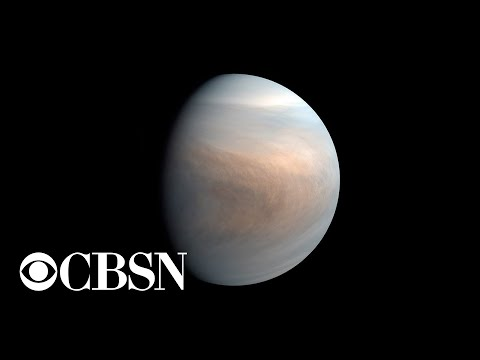 What scientists can lean from discovery of potential life on Venus