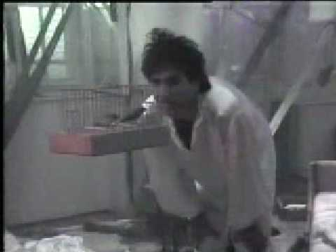 vajta-azra (1985.)
