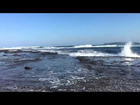 Long reef head land ||Sydney||26th March 2016