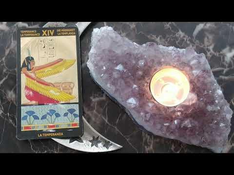 Letway Nappe sp/éciale Tarot Carr/é 12 Constellations Carte de Divination Tarot Astrologie Nappe pour Passionn/és Conseillers Psychologiques Magiciens admired Beautiful