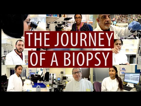 The journey of a biopsy #DiscoverPathology