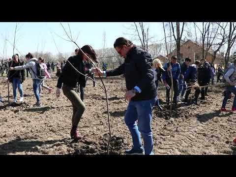 Na Svetski dan šuma srednjoškolci posadili 200 sadnica