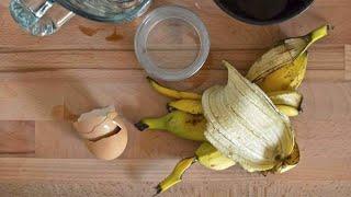 كيف تصنع سماد مغذي لتسريع نمو النباتات بأقل التكاليف في المنزل. Engrais bio et naturel
