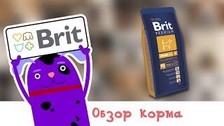 Обзор корма Brit Premium Senior M