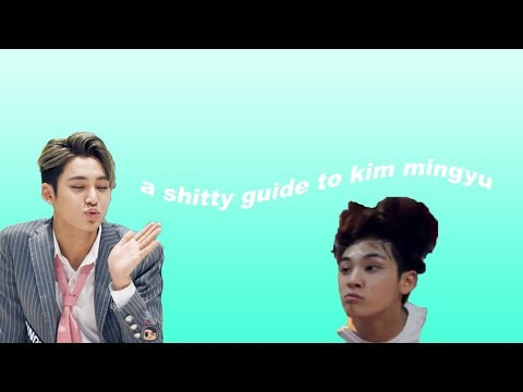 a shitty guide to kim mingyu