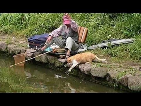 Приколы про рыбалку - video-