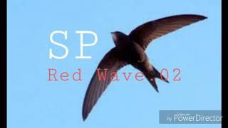 Download Lagu SP Red Wave 02 mp3