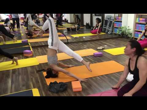 Advance Yoga Practice. Hip opening | Back Bend | Twisting | Handstand | Headstand With Master Raja.