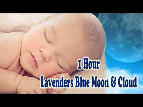 ♫ LAVENDER BLUE LYRICS  Lavender's Blue Dilly Dilly Baby Music To Sleep Baby  Lullaby #7