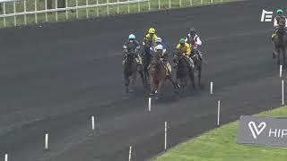 Vidéo de la course PMU PRIX DE FALOT