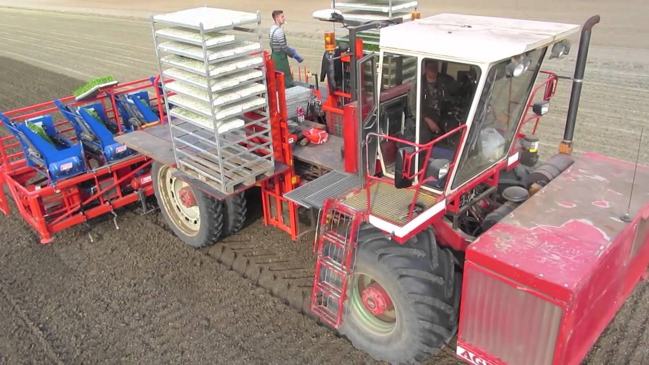 Ferrari Futura Twin 12 Row Automatic planter - Loonbedrijf J.C. Lokers