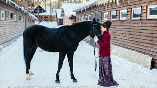 Зимняя фотосессия с лошадью
