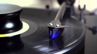 Paul Winter - Epic Song - [vinyl] - ortofon 2m blue - yaqin ms-23b - pro-ject debut - rip HQ - HD