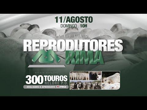 Lote 152 (Rima Monteiro - RIMA A2964)