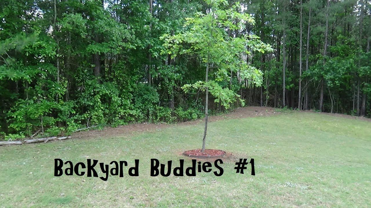 Backyard Buddies #1 - YouTube