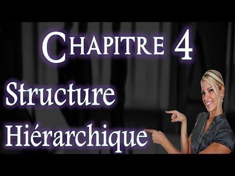 L'entreprise et Son Environnement Chapitre 4 : Structure Hiérarchique ( Darija )