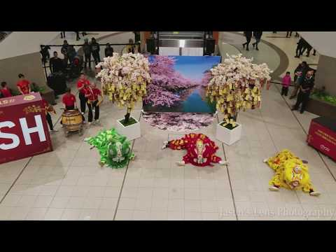 Chinese New Year Lion Dance 2018 Year of Dog Toronto Scarborough Town Centre