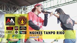 Download lagu JAMES AP - NGENES TANPO RIKO - AA JAYA (Live) SIDOREJO