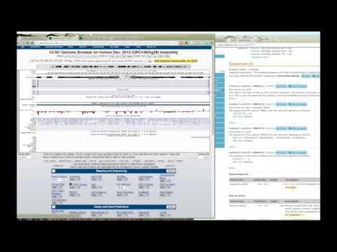 생명정보개론 제11강 - 파트2 UniProt AS via UCSC Genome Browser