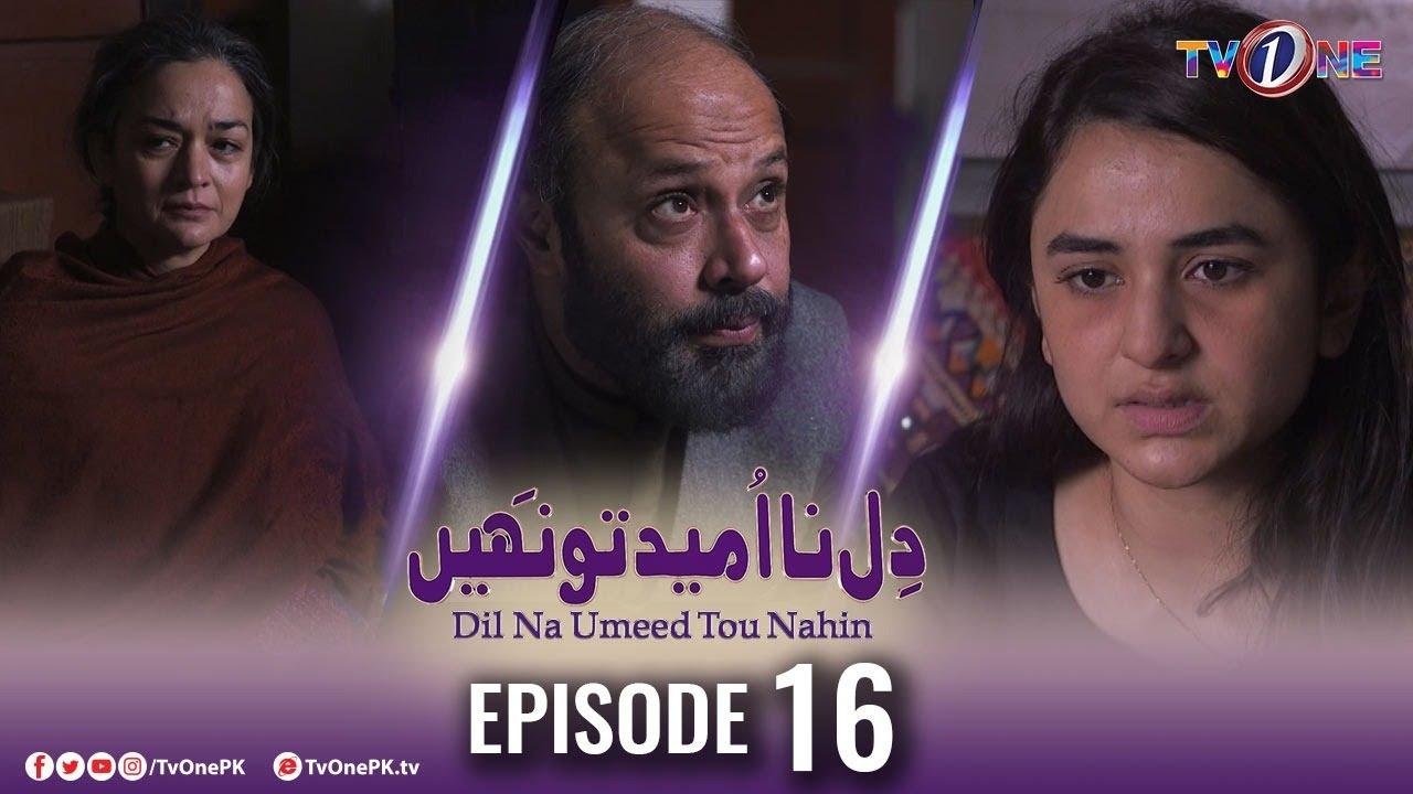 Download Dil Na Umeed Toh Nahi   Episode 16   Tv One Dramas