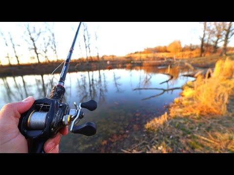Bass Fishing at the Favorite Rods Farm