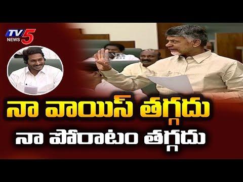 Chandrababu Naidu Gives Counter to YCP Leaders at AP Assembly | TV5 News