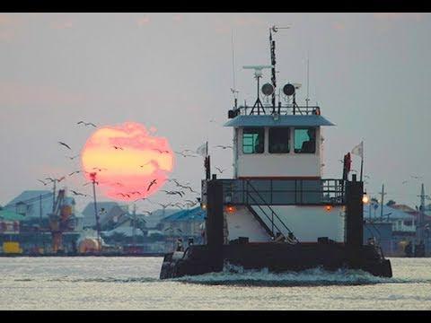 Restoring America's Delta