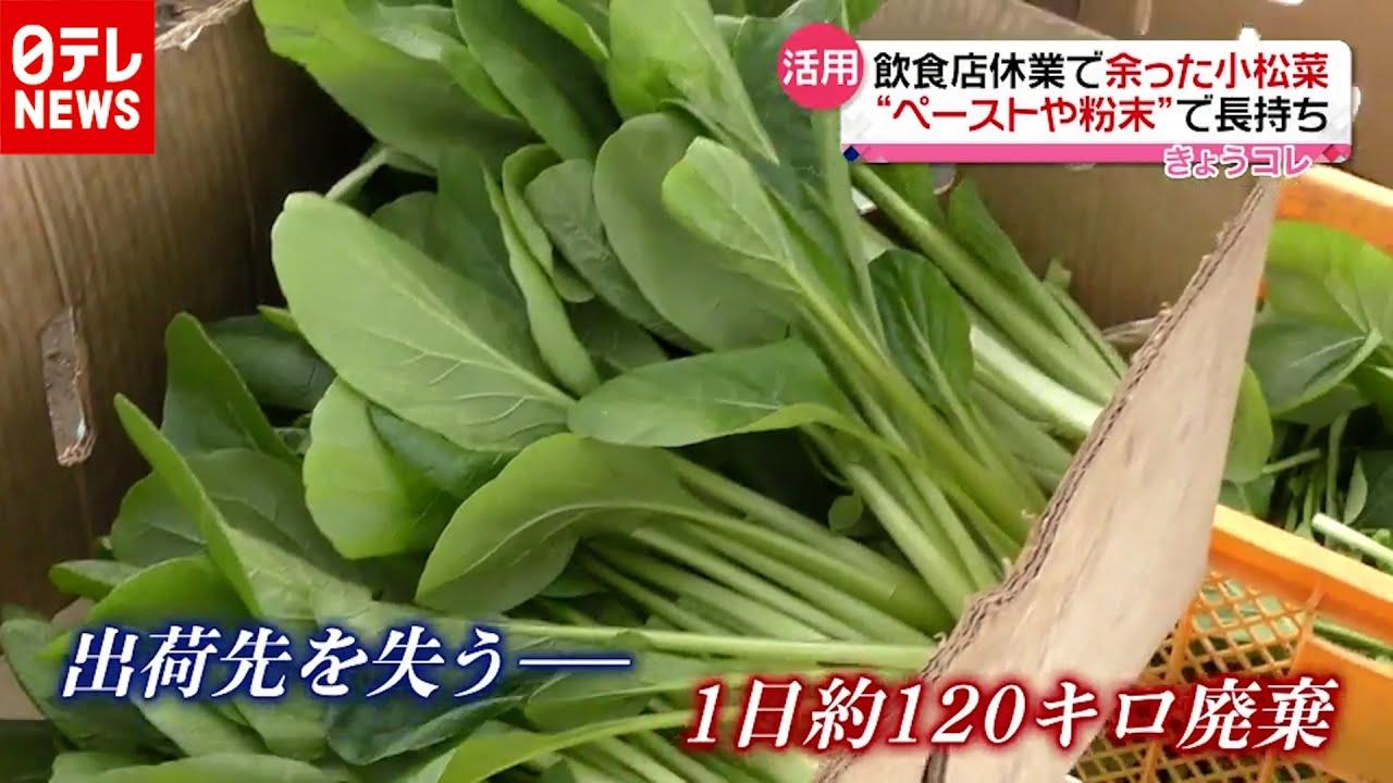 野菜 販売 廃棄